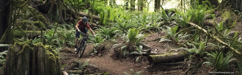 Ridespots, Cumberland, Adventure Travel, Mountain Biking, mtb, British Columbia
