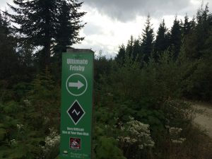 BC Mountain Bike Road Trip Revelstoke, Ultimate Frisbee and Frisbee Ridge Trails
