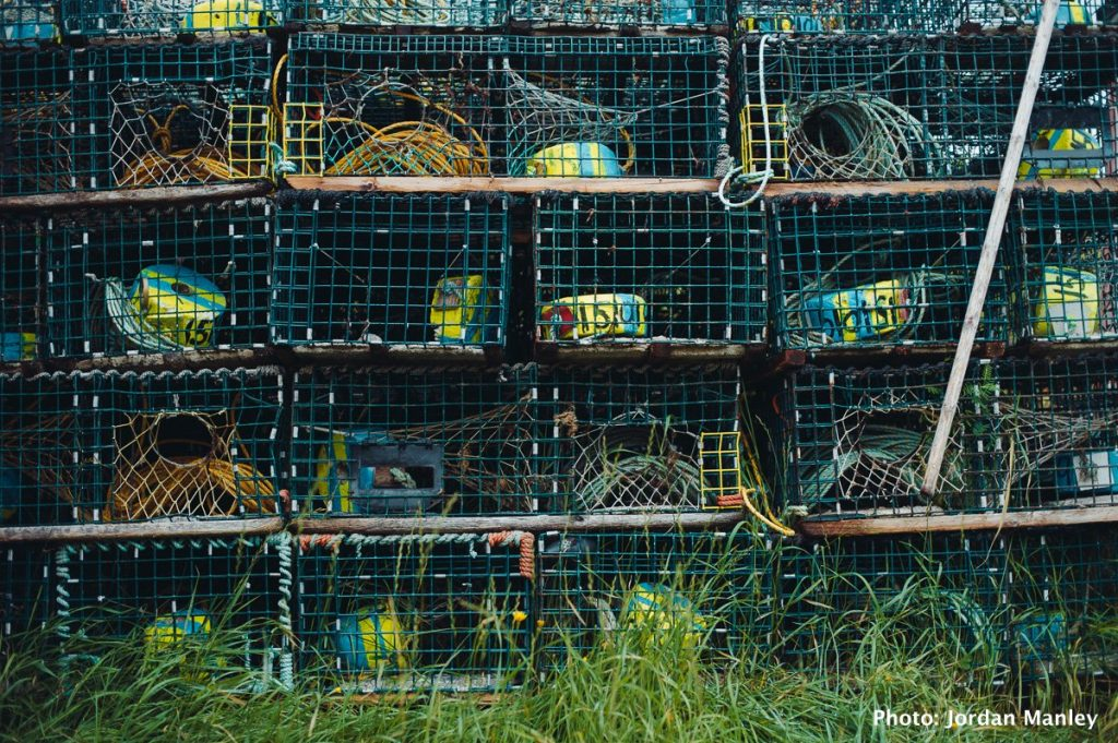Crab and Lobster traps, Newfoundland