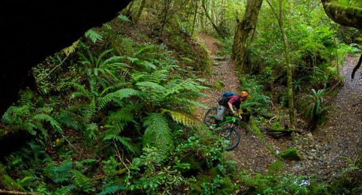 Rotorua, New Zealand – Mountain Bike Destination